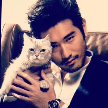 Magnus-chairman meow